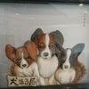 祖母の手作り看板犬パピヨンの押絵の画像