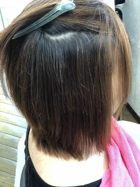 縮毛矯正97(定期的な白髪染め)の記事より