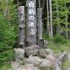 9月29日 白駒池紅葉の画像