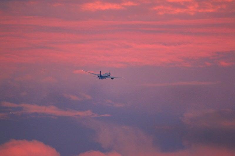 夕焼け空の飛行機ANA