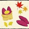 秋の味覚 サツマイモの画像