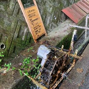金剛山 カトラ谷⤴️文殊尾根⤵️の画像