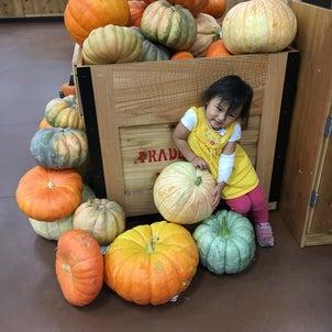 10月サロン営業日の画像