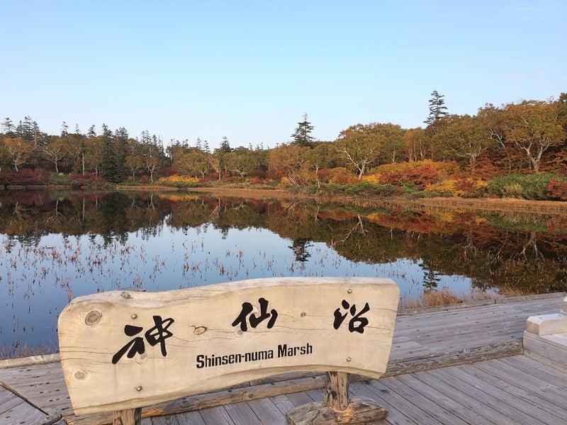 ニセコ 神仙 沼 ニセコ神仙沼・紅葉時期でも朝10時までは空いています