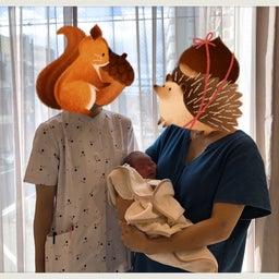 画像 退院しました(妊娠ブログ最終) の記事より 1つ目