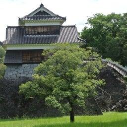 画像 熊本_熊本城ときくもとやのお菓子 の記事より 7つ目