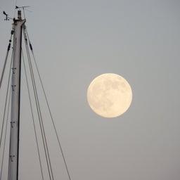 画像 【第2週】 10/12 <ほぐして ほぐされて> 栗名月と秋のイベントたち の記事より 3つ目