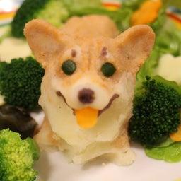 画像 愛犬のお誕生ケーキ の記事より 12つ目