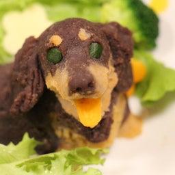 画像 愛犬のお誕生ケーキ の記事より 2つ目