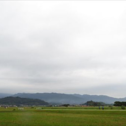 画像 コスモス~藤原宮跡(2019.10.6) の記事より 1つ目