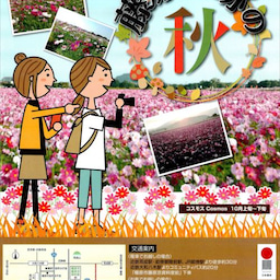画像 コスモス~藤原宮跡(2019.10.6) の記事より 29つ目