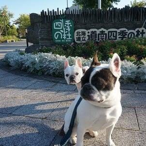 道南四季の杜公園の画像