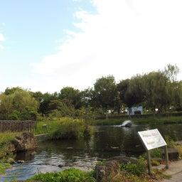 画像 さいたま水族館&羽生水郷公園(埼玉県羽生市) の記事より 7つ目
