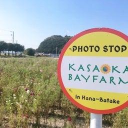 画像 遅くなったライオン家族旅行 〜 Part① in Okayama 〜 の記事より 34つ目