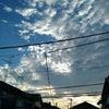 1年前の空の写真を整理、被写体は電線のよう?!の画像