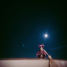 画像 【バラの生命力を取り込もう♡】香りでできるエネルギーマネジメント♡ の記事より 3つ目
