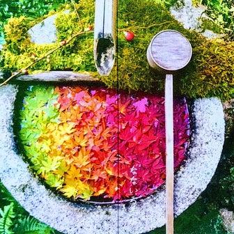 【京都】柳谷観音 楊谷寺でいただいたステキな【なないろ手水御朱印帳】&【御朱印】~追加まとめ編~