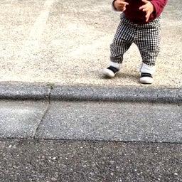 画像 歩き始めた我が子が、細かい件。 の記事より 1つ目