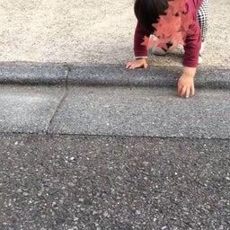 画像 歩き始めた我が子が、細かい件。 の記事より 2つ目