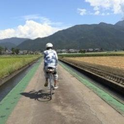 画像 今週の正平さん~福井県 の記事より 4つ目
