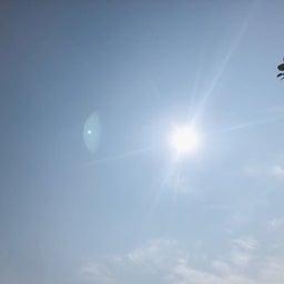 画像 遅くなったライオン家族旅行 〜 最終回 in 兵庫県ネスタリゾートで遊び倒せ 〜 の記事より 20つ目