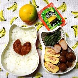 画像 今日のお弁当〜つやつや新米ごはん! の記事より