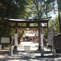 そうだ。中山神社、行こう。(埼玉県さいたま市)