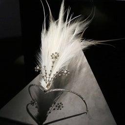 画像 【秋の夜長に♡】羽とキラキラ♡ダイヤモンドの魅惑 の記事より 10つ目
