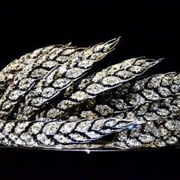 画像 【秋の夜長に♡】羽とキラキラ♡ダイヤモンドの魅惑 の記事より 6つ目