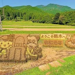 画像 紅葉の那須岳へ の記事より 1つ目