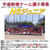 新潟市学童野球チーム『NSジュニア』選手募集!!の画像