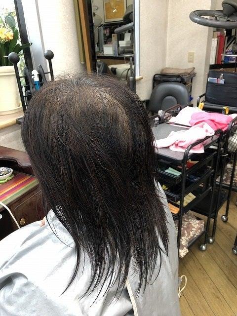 縮毛矯正ファイル78の記事より