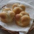 【大阪府泉大津市】初めてさんもパン作り。小さなパン教室 trees