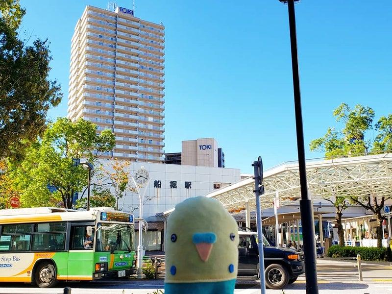 台風 19 号 江戸川 区