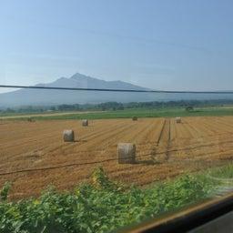 画像 北海道釧路_釧路湿原と千島海苔羊羹 の記事より 3つ目
