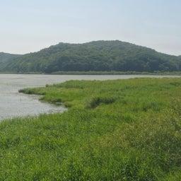 画像 北海道釧路_釧路湿原と千島海苔羊羹 の記事より 5つ目