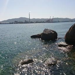 画像 G杯グレ徳山予選、地の筏岩(^^) の記事より 8つ目
