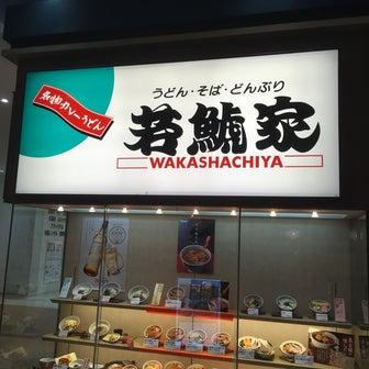 【岐阜県大垣市】若鯱家で味噌煮込みうどんを喰らう