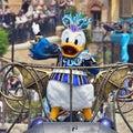 ミキ衛門の Disney Dream Club