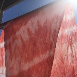 画像 かんたん草木染めで帯を作りませう❣️ の記事より 1つ目