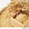 玄米が美味しく炊ける三種類の炊き方講習会の画像