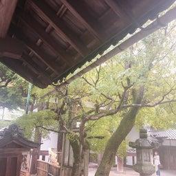 画像 第18回石山寺紫式部杯女子剣道大会 の記事より 3つ目
