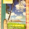 11歳の女の子達がダイソーで買う物&皆様にお願い&ワイキキのガイドブックを無料配布中!その筆者は