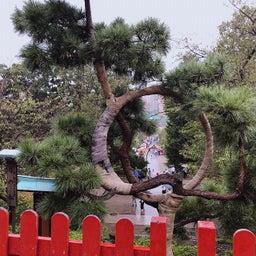 画像 上野恩賜公園の神社仏閣に。 の記事より 7つ目