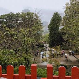 画像 上野恩賜公園の神社仏閣に。 の記事より 5つ目
