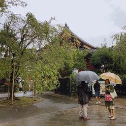 画像 上野恩賜公園の神社仏閣に。 の記事より 2つ目