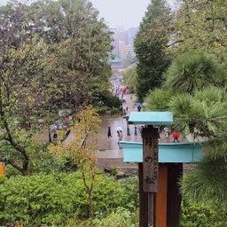画像 上野恩賜公園の神社仏閣に。 の記事より 6つ目