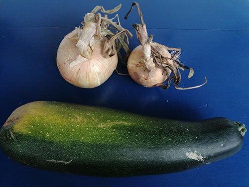 2019-verduras gigantes-1