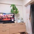 ✴︎✴︎ボタンの木✴︎✴︎整理収納でシンプルライフ♡