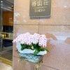 HOTEL 椿山荘 TOKYO アフタヌーンティーとfoxeyの画像